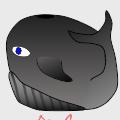 Bouncy Dolphin